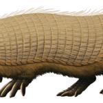 Peltephilus