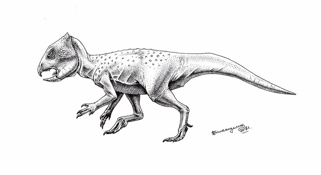 Archaeoceratops oshimai