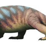Stenaulorhynchus
